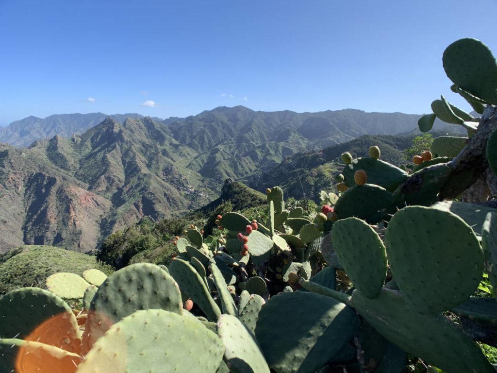 Blick im anaga Gebirge