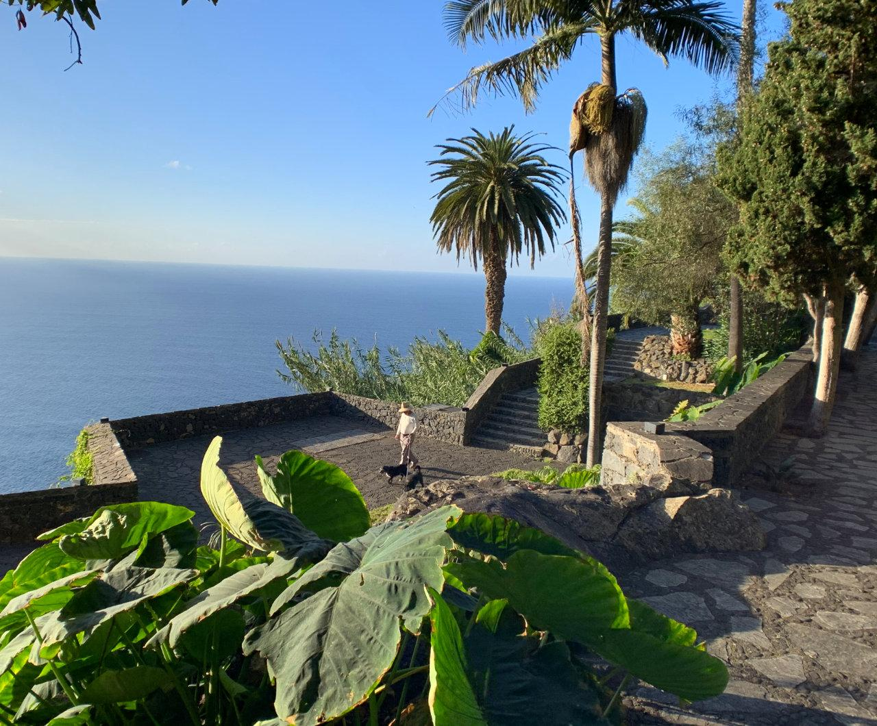 Panoramablick über Palmen über den Atlantik im Parque de los Lavaderos; Bild: Roland Strobl