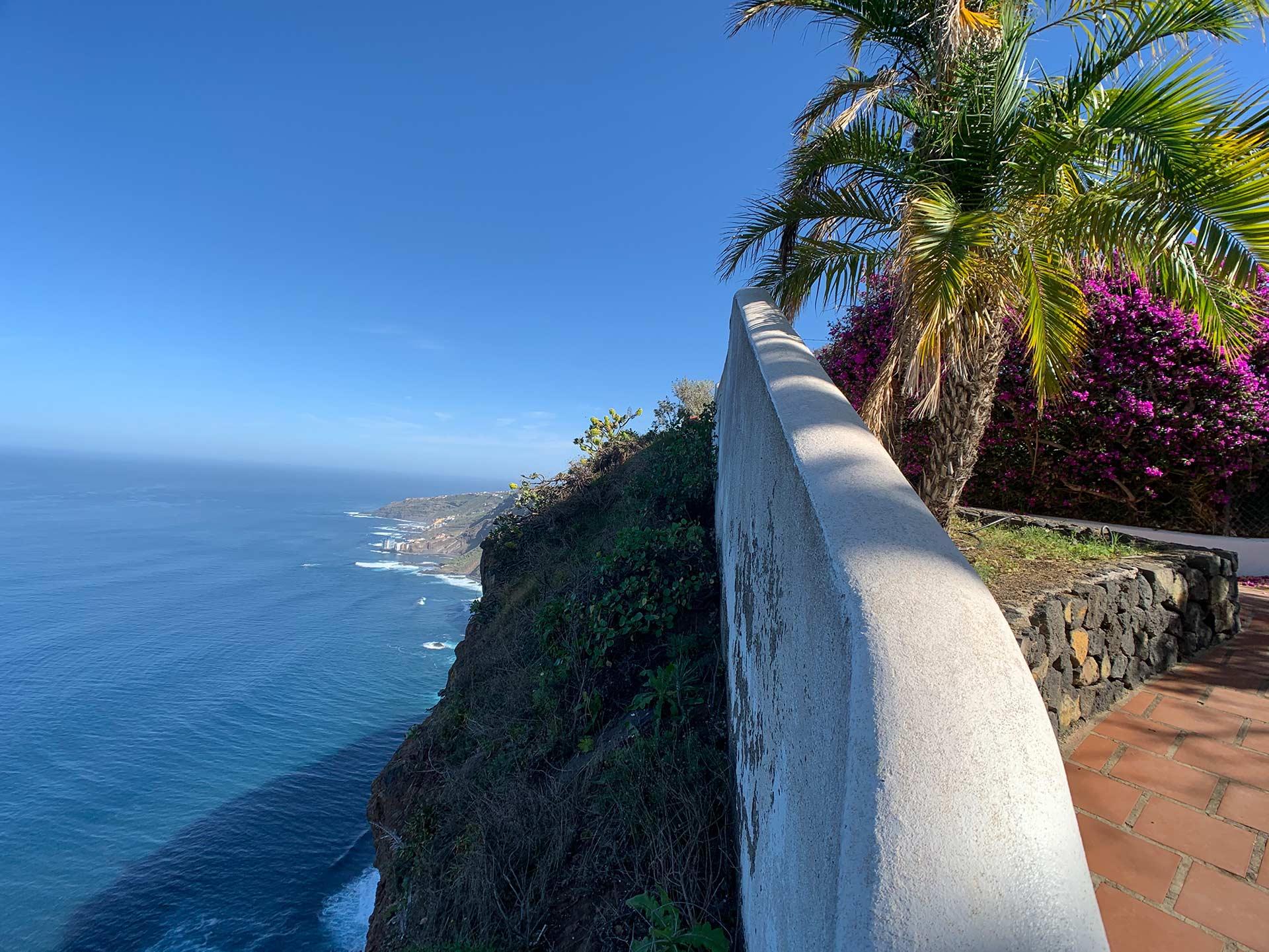 weiße Mauer vor einer Steilküste mit Blick auf das Meer im Hintergrund Dattelpalme