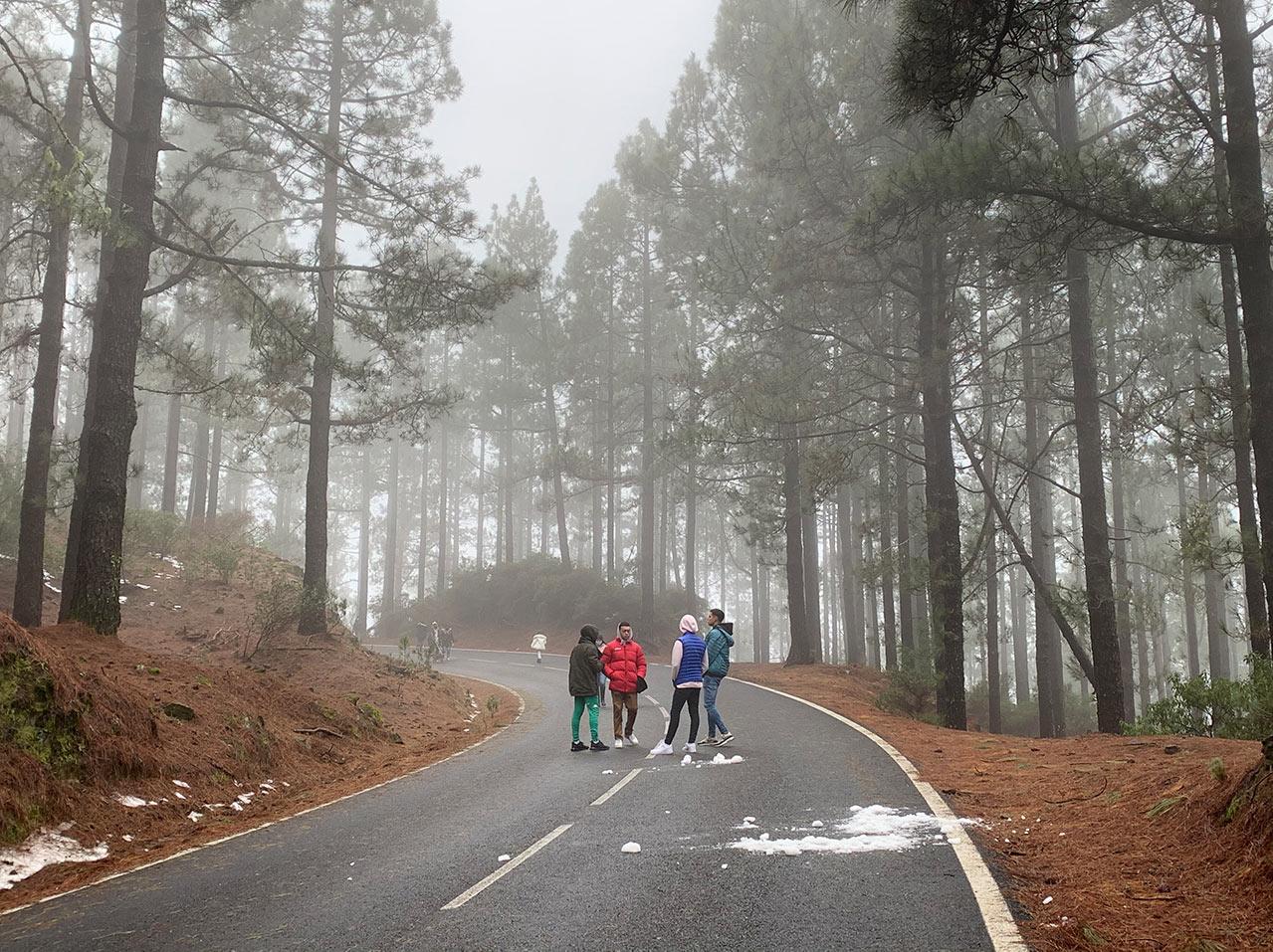 4 junge Männer stehen mitten auf einer Autostrasse in einem Kiefernwald. Es liegt Schneebrocken auf der Strasse