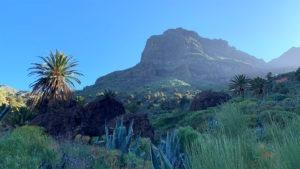 Die Sonne geht hinter einem riesigen Felsen auf und wirft Licht auf den Bergrücken. Eine erleuchtete Palme im Vordergrund